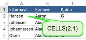 Makro01-Cells