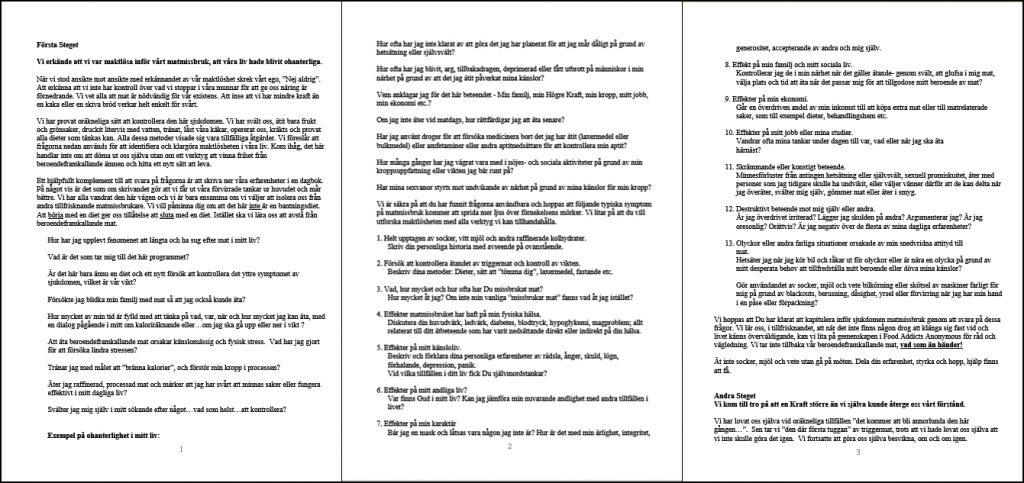 forsta-steget-3-sidor