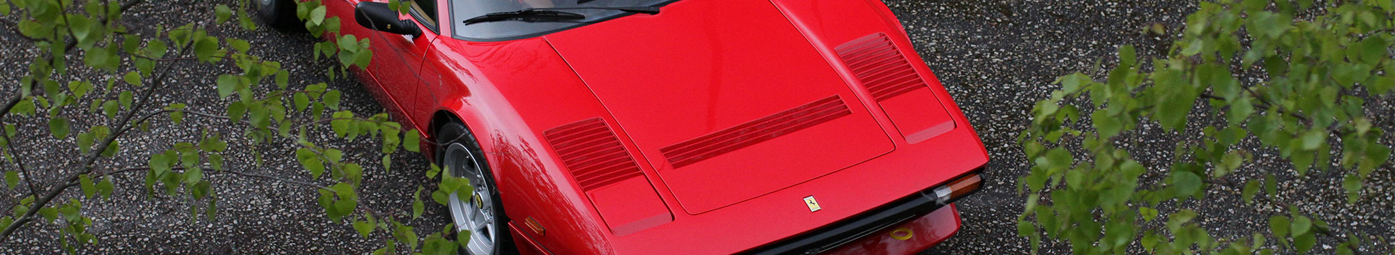 Ferrari 308 GTB QV behind the trees and leafs. Front page of Fascinating Cars