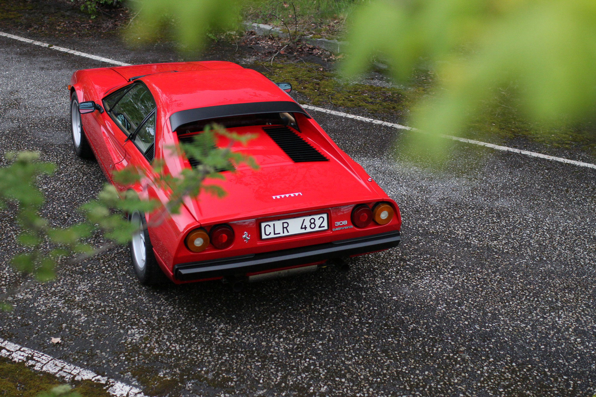 Ferrari 308 from behind between the trees