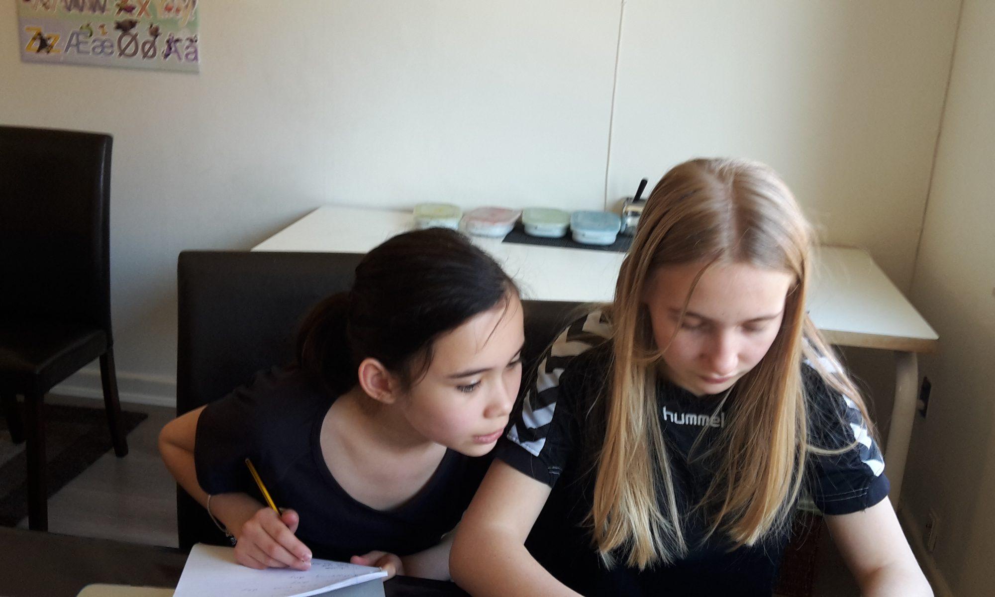 FEGU Odense lektiehjælp matematik