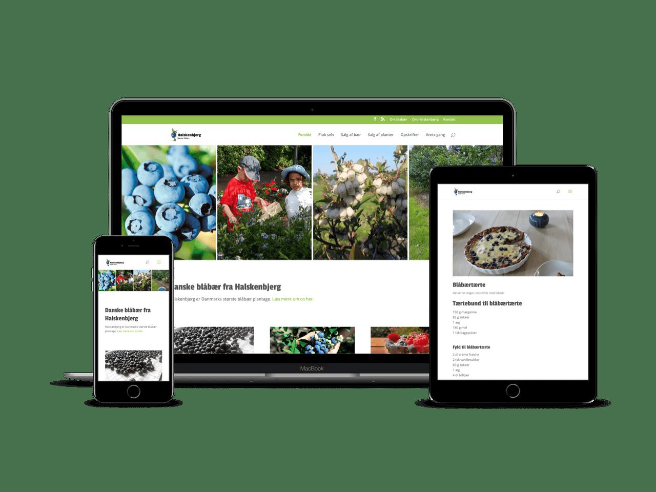 Redesign i WordPress med mobilvenligt layout og Divi Child Theme
