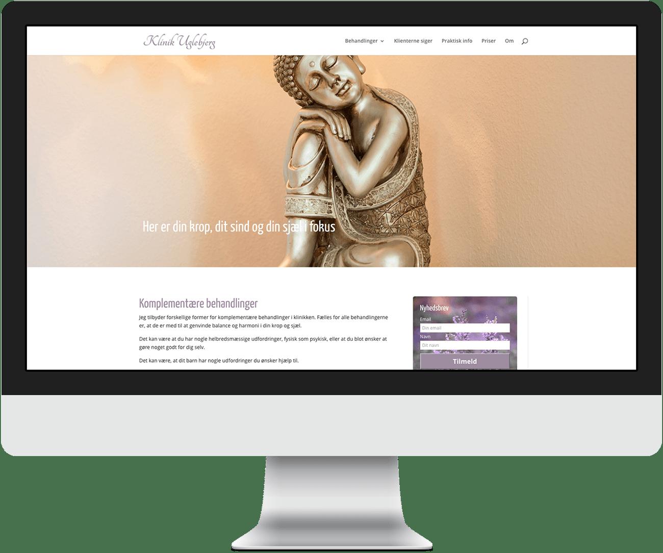 Online Basis WordPress kursus