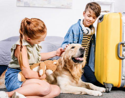 Hund og kuffert