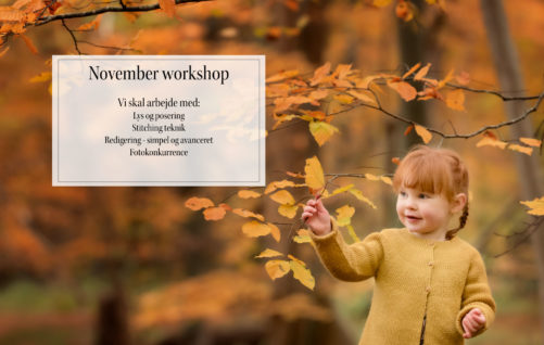 fotografi Workshop november