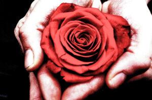 Valentinsdag gave