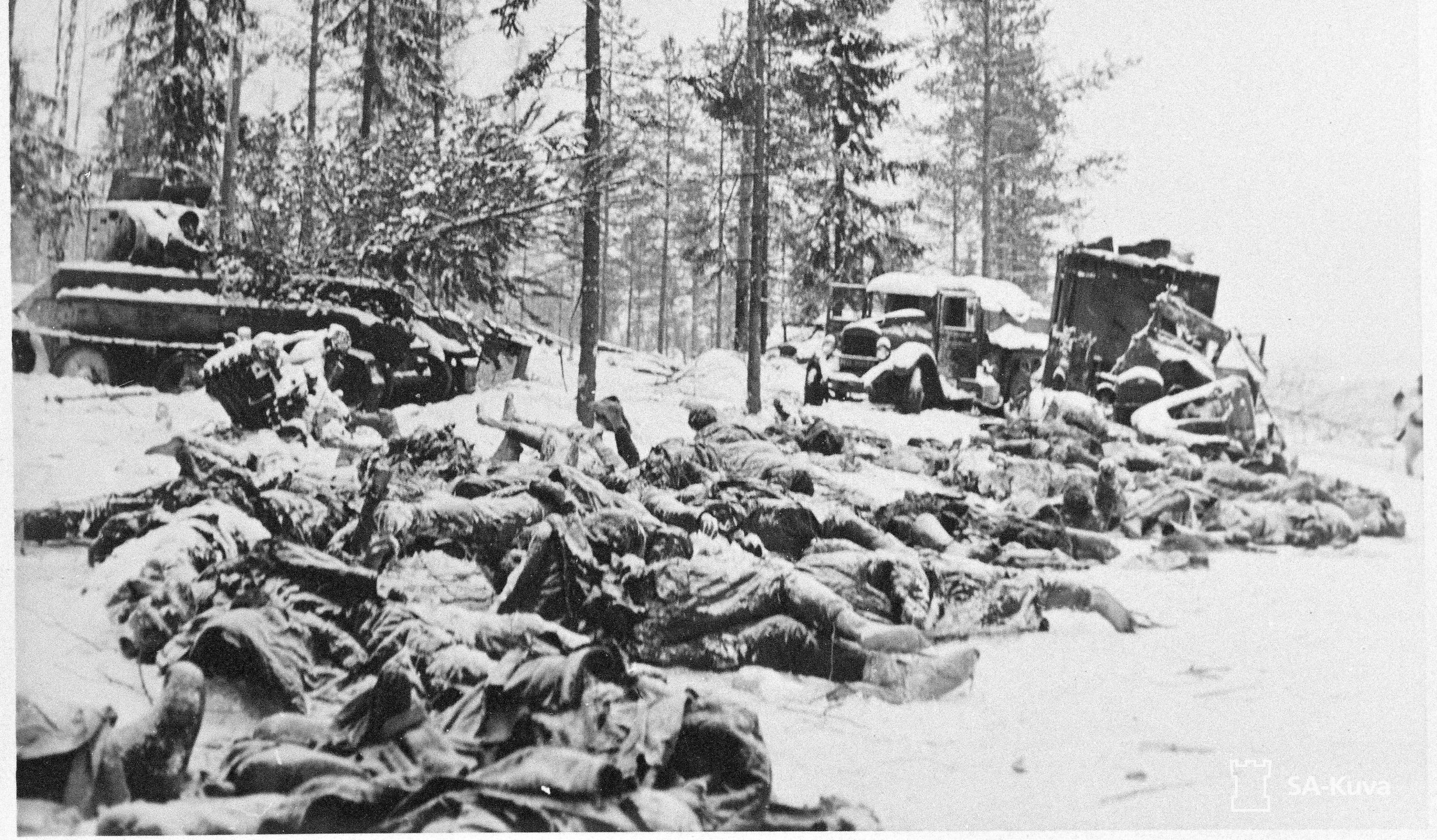 What were the Red Army losses during the Winter War?