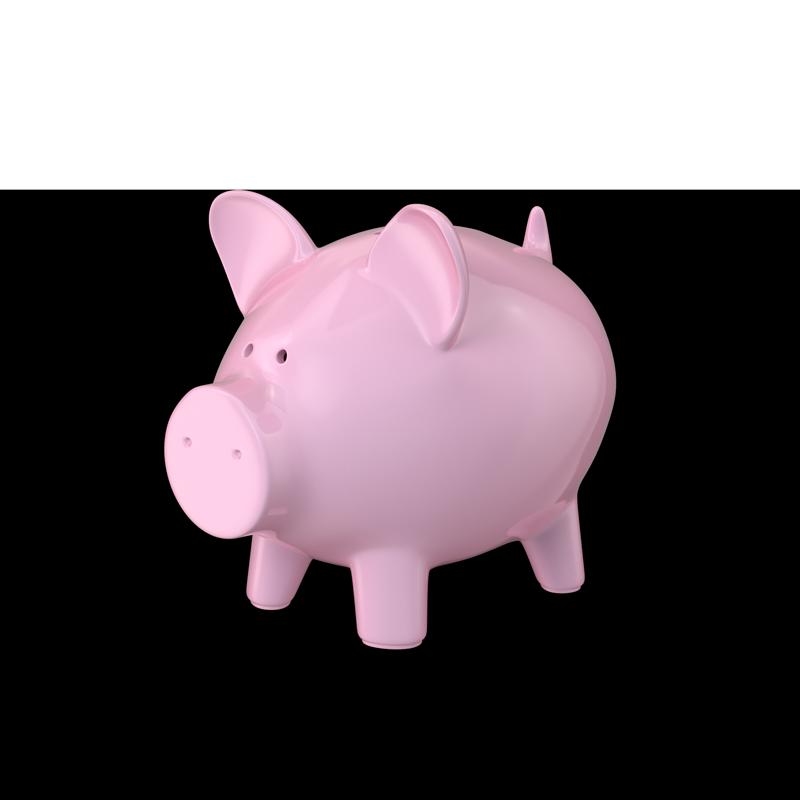 Piggy-Bank-800x800