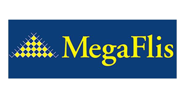 megafli log