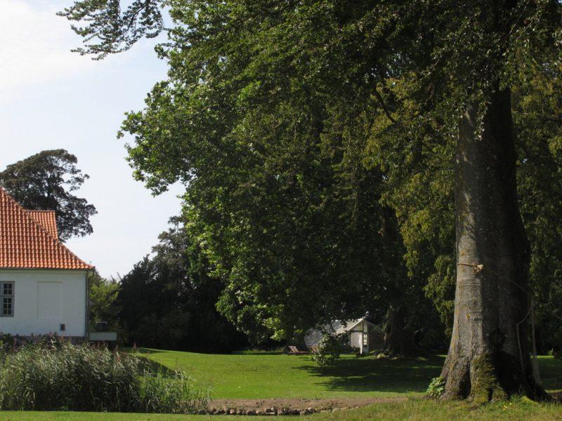 Orangeri, park, orangery