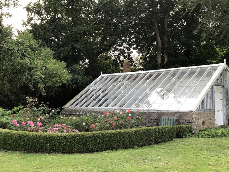 Drivhus, orangeri, rosenhave, sommer, greenhouse, rose garden