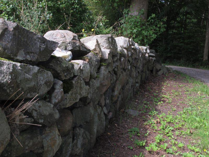 Stendige, stensætning, park, stonewall, forest