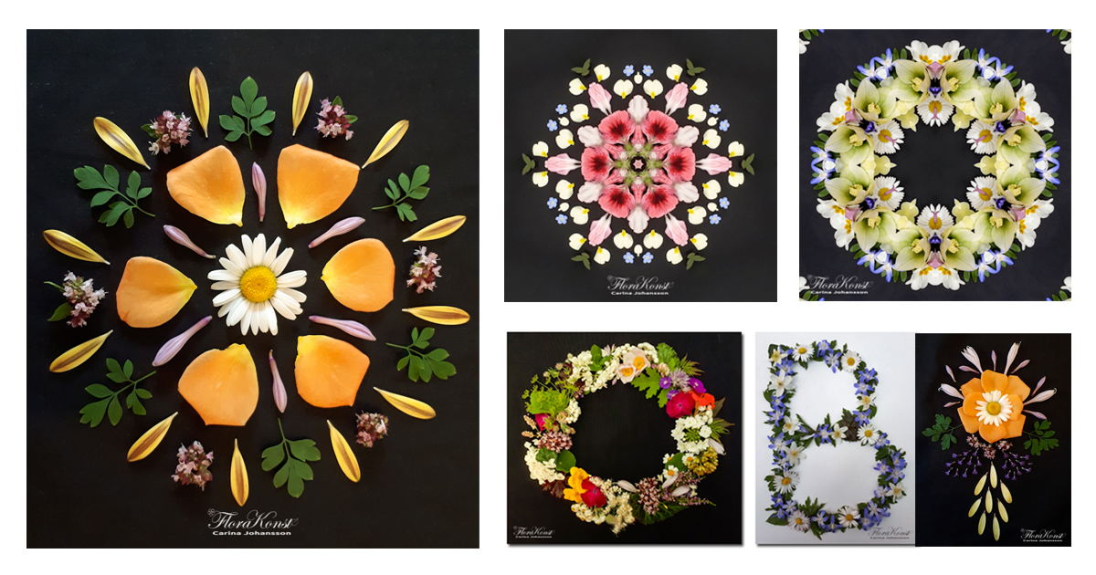 Multiple pictures of art made of flowerpetals