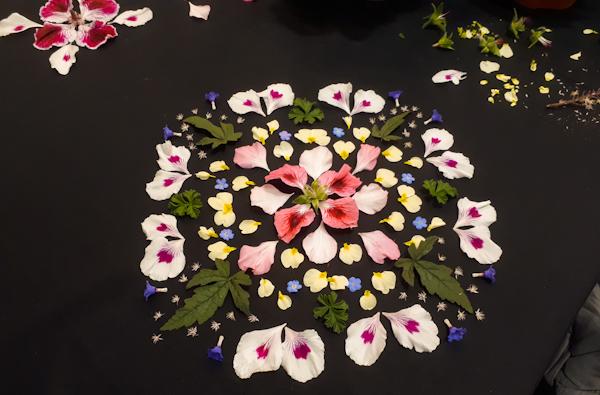 En mandala av utlagda blomblad.