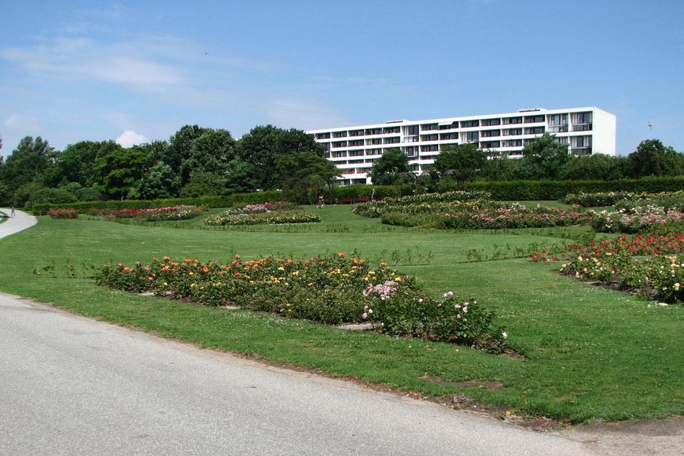 Ботанический сад Орхус - pозарий.