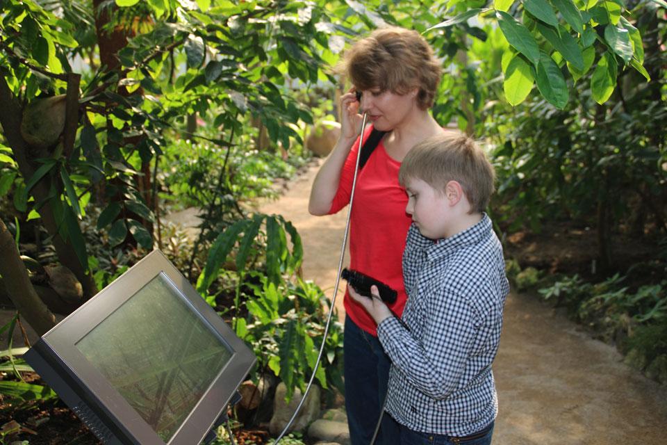 В теплицах появились мониторы с информацией о растениях.