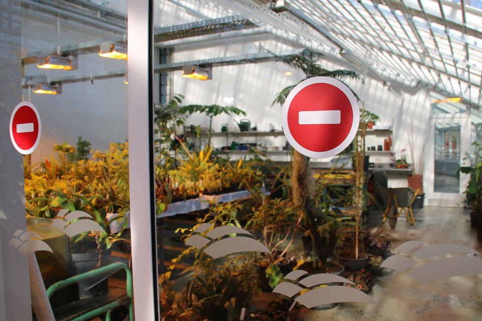 Ботанический сад г. Орхус, Дания