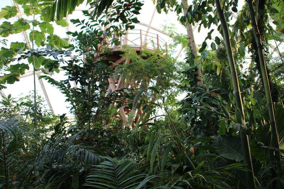 Смотровая вышка отанического сада г. Орхус