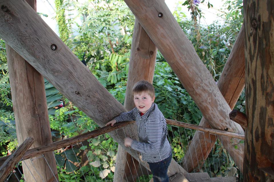 В тропическом куполе теплиц ботанического сада г. Орхус, Дания