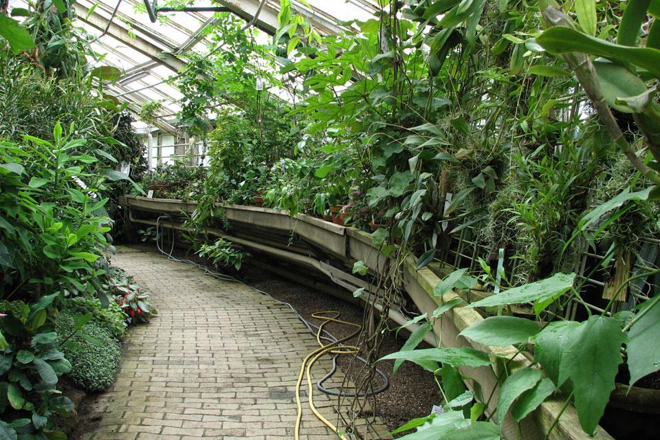Ботаничесский сад в г. Орхус, Дания, 30 июня 2007