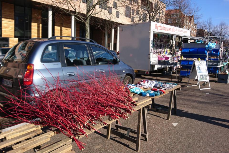 Красные веточки деренa для масленицы на городской рынке Ингеслев Бульвар