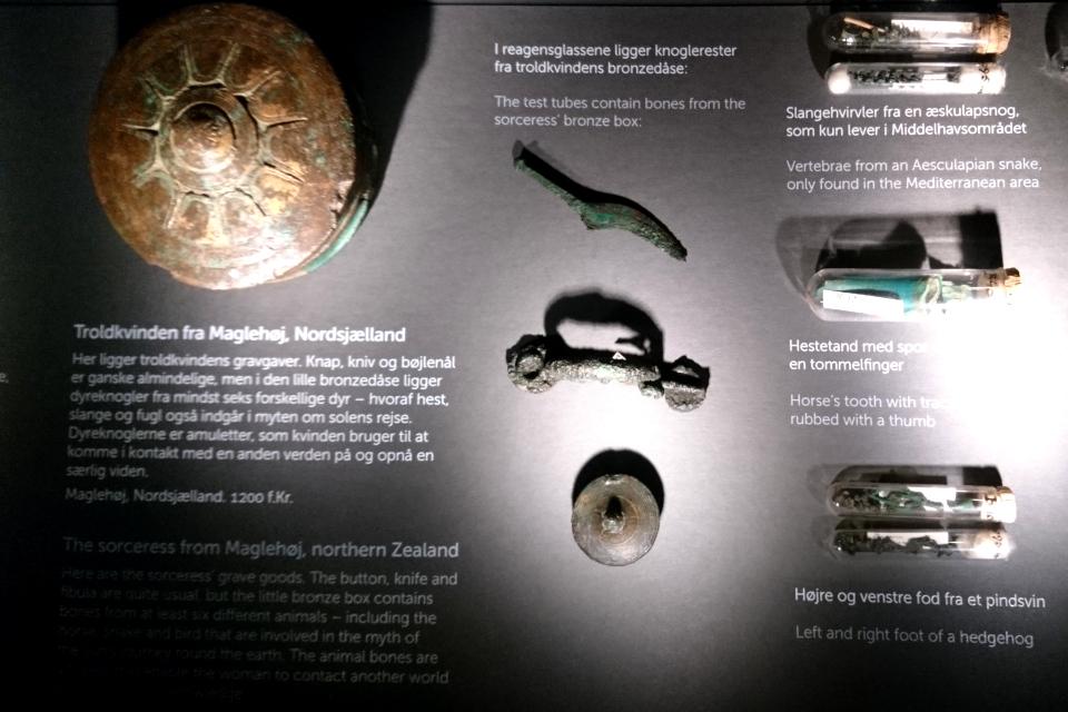 Остатки ежа (pindsvin)и некоторых других священных животных, найденные в кургане