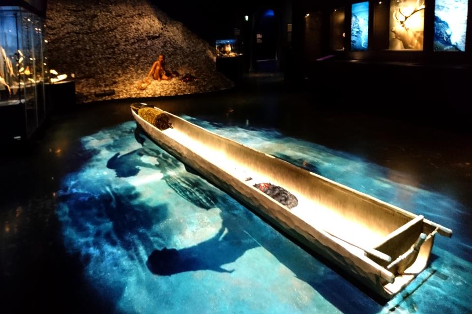 Копия лодки-однодревки культуры Эртебёлле, в которой ученые обнаружили пыльцу