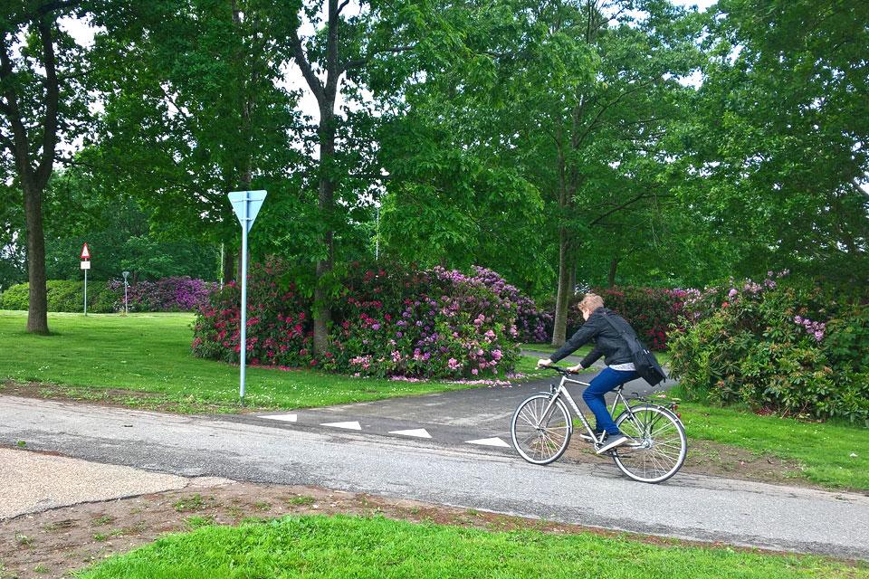 дорожки для пешеходов и велосипедистов