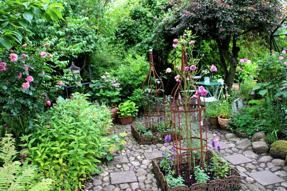 В саду около 100 видов роз