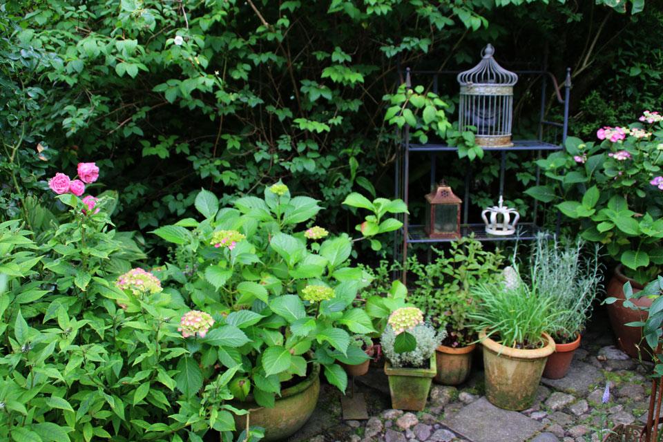 сад создан в процессе бесконечного творчества
