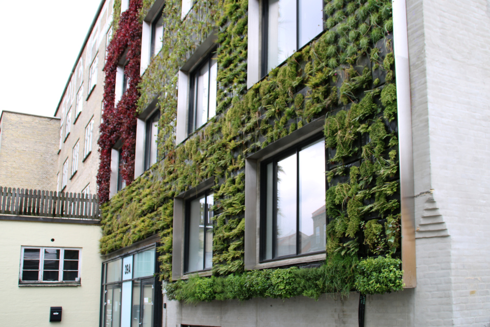 Вертикальный сад Майлгэде Орхус и зеленые стены