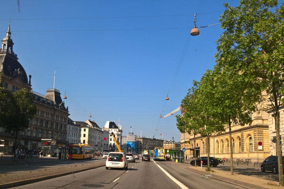 Озеленение Копенгагена. Зеленая аллея из деревьев