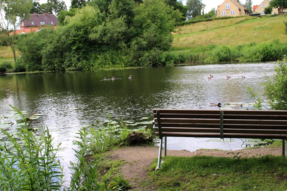 Лесопарк в пригороде Копенгагена