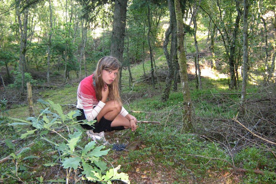 Моя дочка собирает чернику на опушке смешанного леса