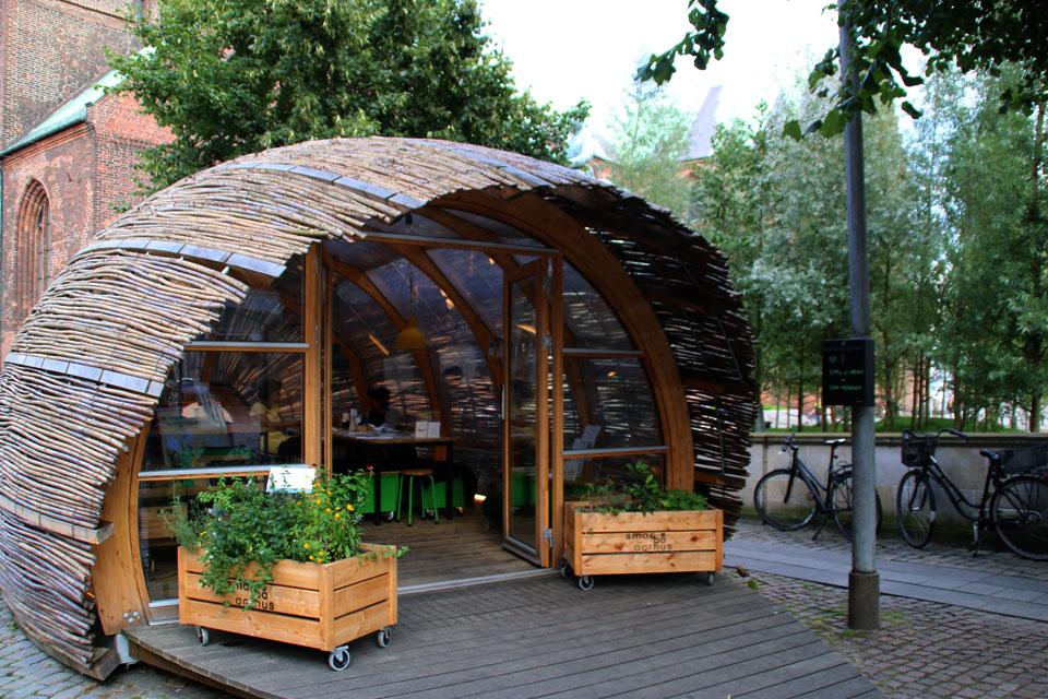 Озеленение Орхуса - Зеленое посольство