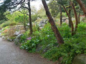 Ботанический сад Орхус – заповедный парк