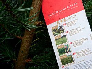 Датские елки или елочный бизнес в Дании