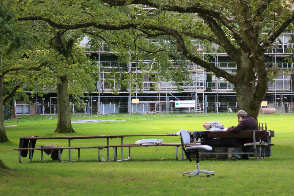 Бездомный в величественном парке Орхусского университета, Дания. Фото 29 авг. 2021