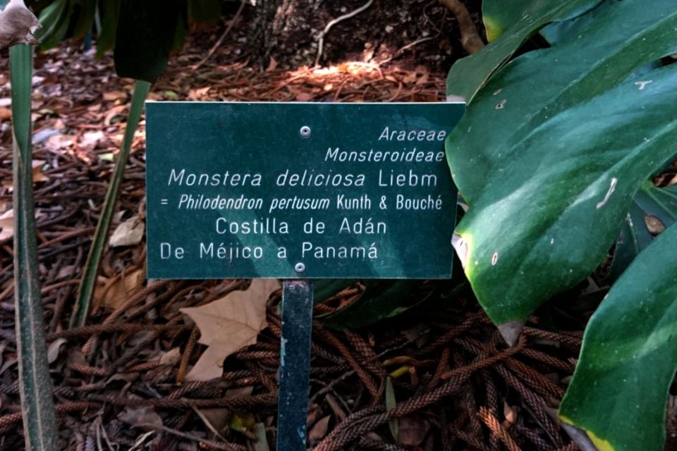 Табличка в ботаническом саду г. Малага, Испания