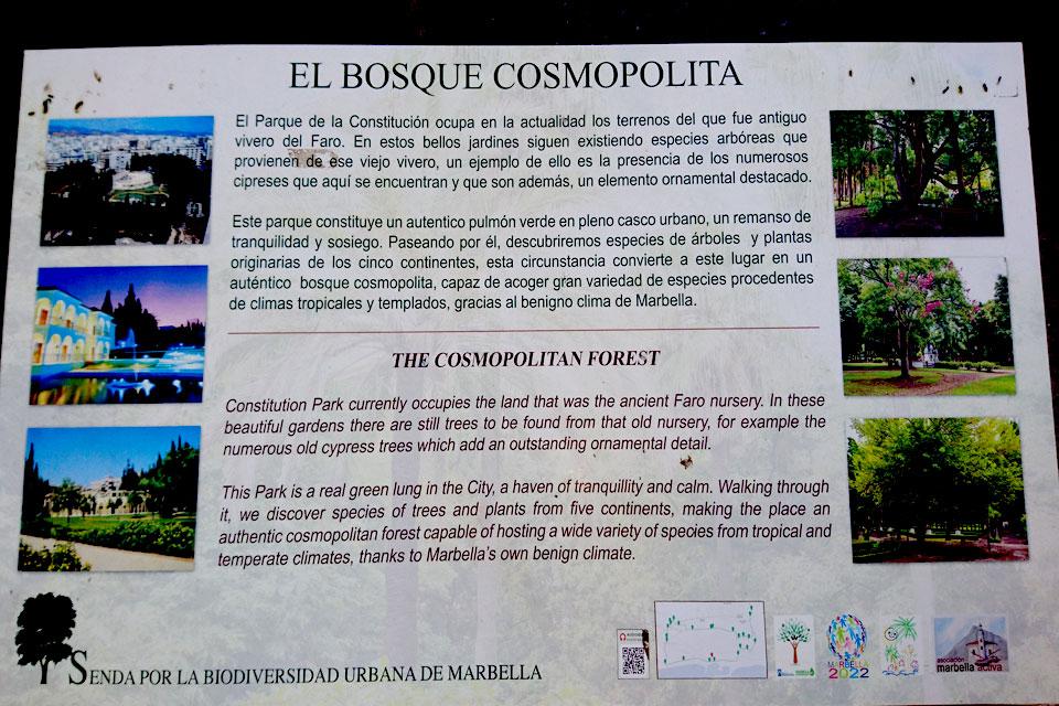 El Bosque Cosmopolita / The Cosmopolitan Forest