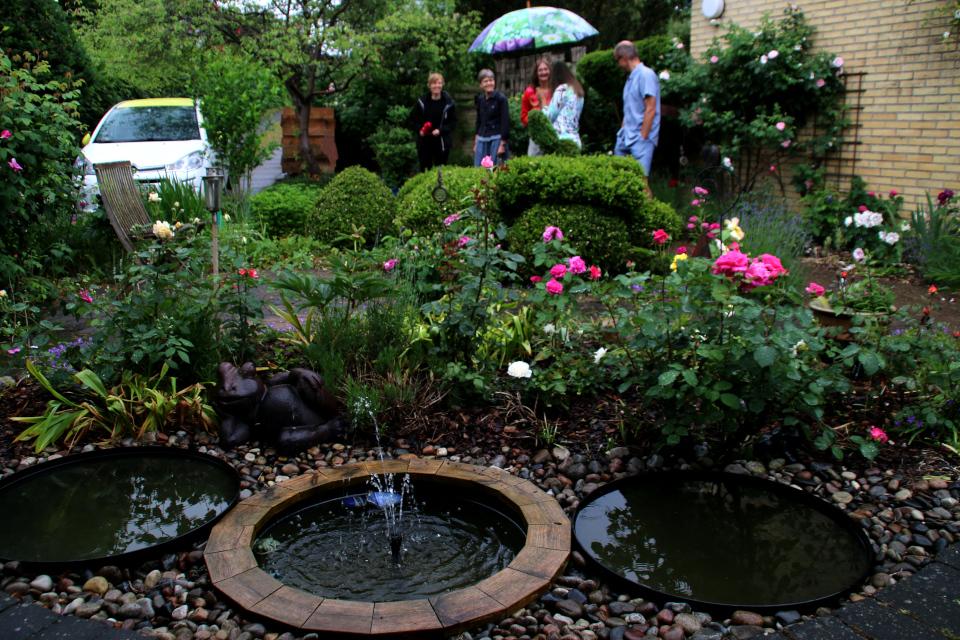 Розы украшают цветочную клумбу с фонтанчиками у входа в дом, сад Йорк