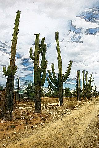 Судьба конкистадора - часть 6 cactus