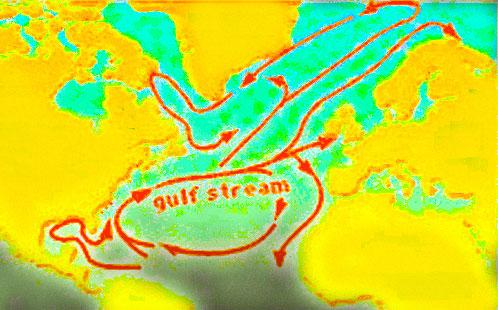 Судьба конкистадора - часть 6 gulf stream