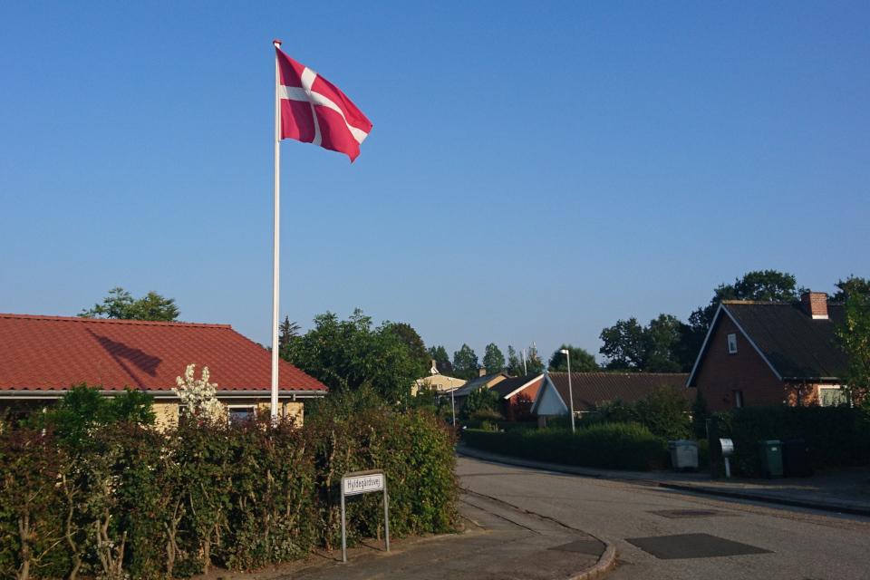 Улица Бузинной фермы Hyldegårdsvej 30 июл. 2019, Хойбьяу / Højbjerg, Дания
