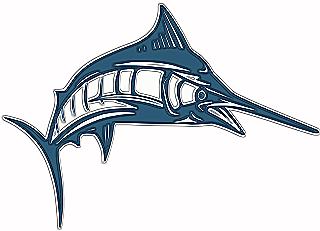 swordfish marlin billfishing