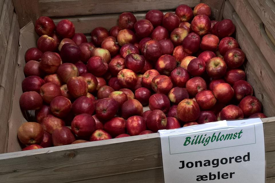 Сорта яблок в магазинах Дании: Джонагоред - Jonagored