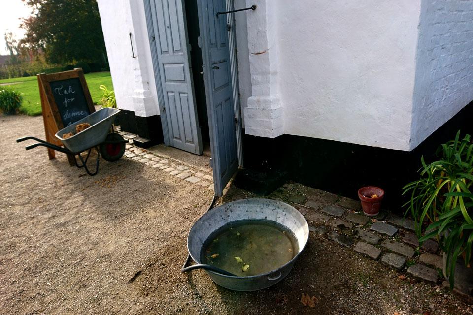 У входа в оранжерею, где проходит мероприятие по изготовлению яблочного сока