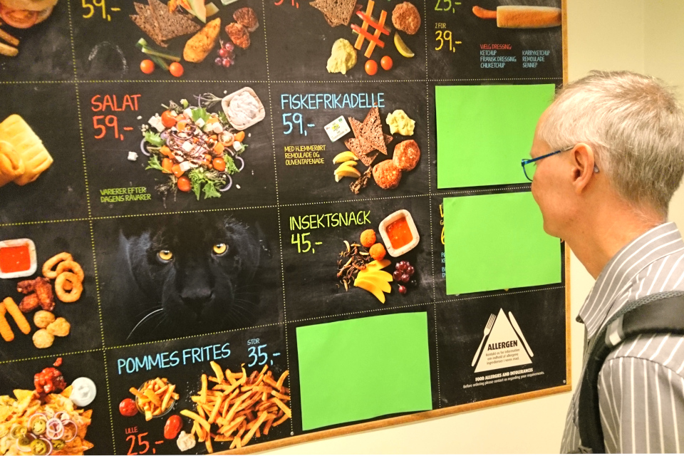 Еда с насекомыми (insektsnack) в меню кафетерия