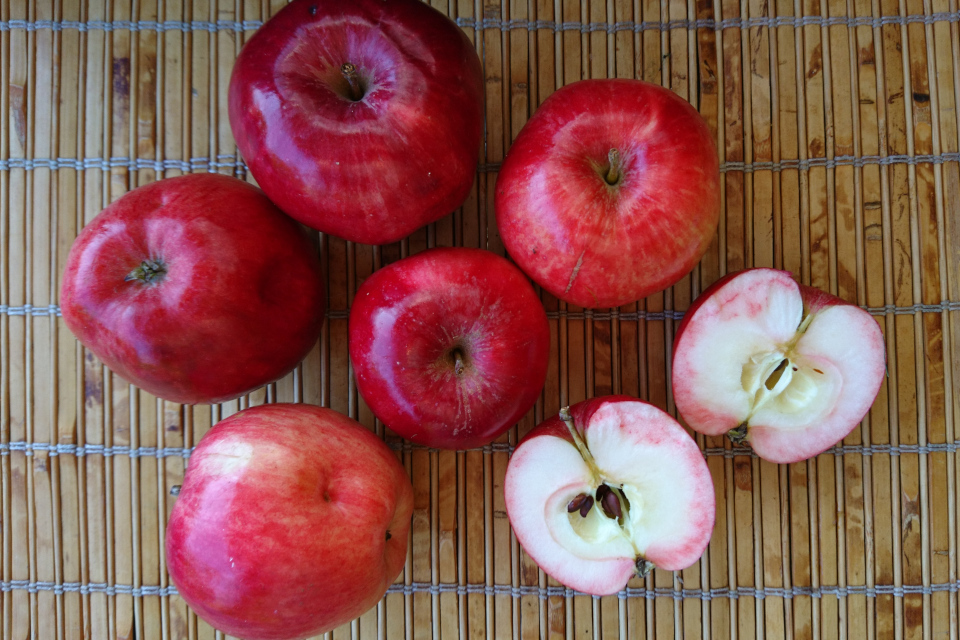 Яблоки сорт Дискавери (Discovery) на срезе. Фото 15 окт. 2018, мой сад, г. Хойбьяу / Højbjerg