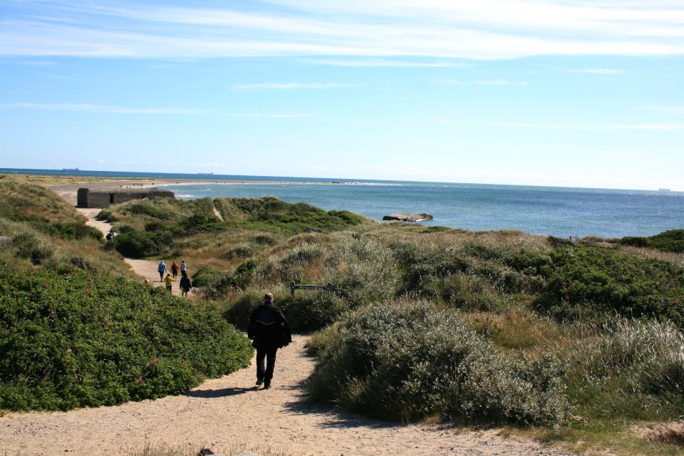 Скаген - место, где встречаются два моря - Северное и Балтийское